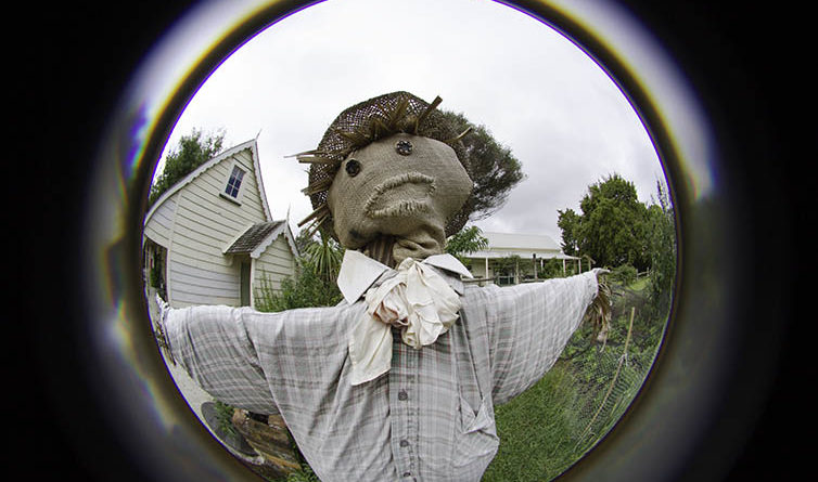Playing with a fisheye
